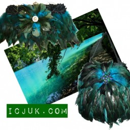 Turquoise feathers
