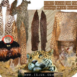 Take a walk on the wild side with ICJUK!