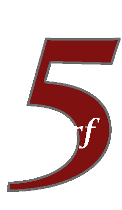 five dollar scarf