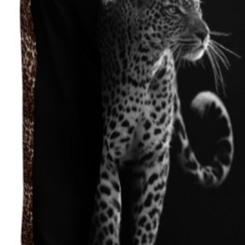 Black and White Leopard with Leopard Print